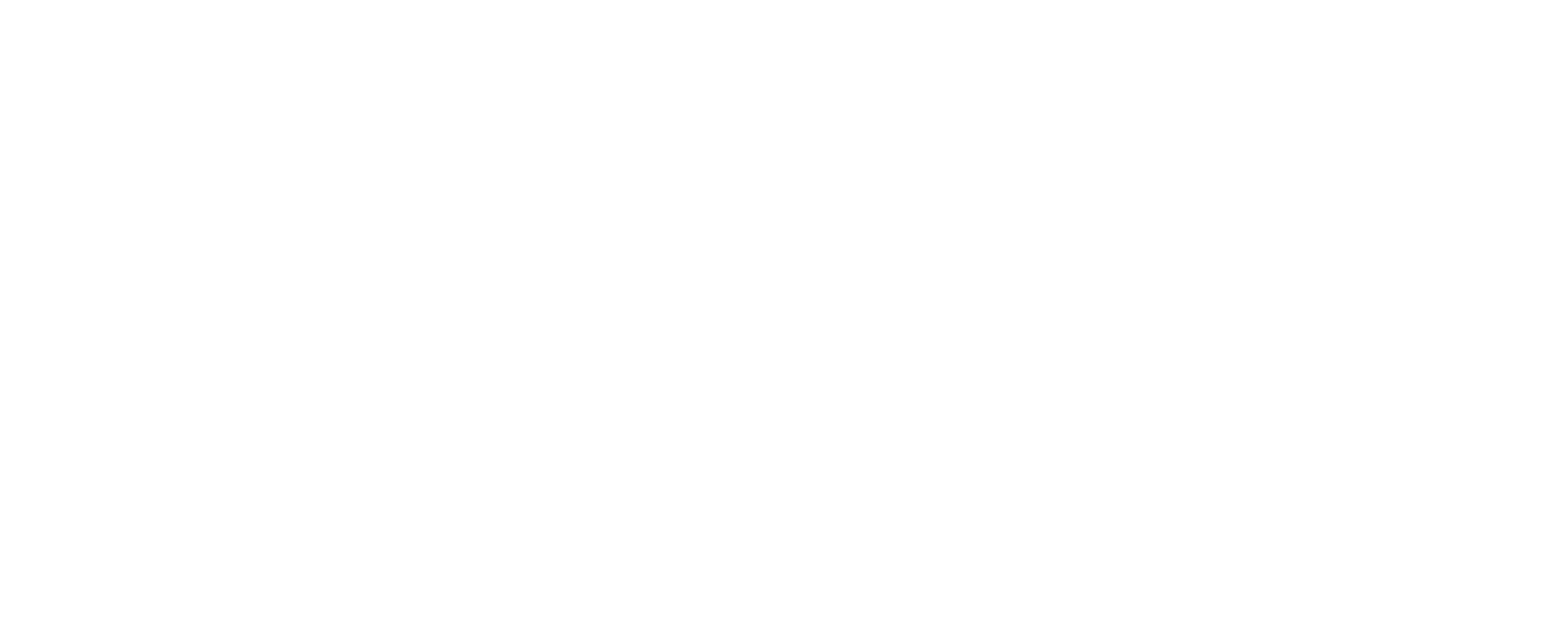 AFA Alicante